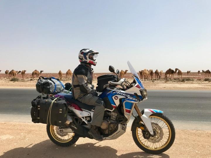 Western Sahara Part 3: The SaharawiWedding